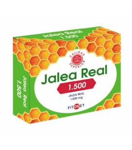 Jalea Real 1500mg 14 ampollas de Fitokey