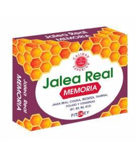 Jalea Real Memoria 14 ampollas de Fitokey