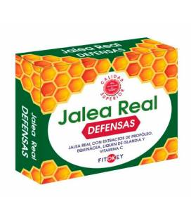 Jalea Real Defensas 14 ampollas de Fitokey