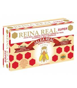 REINA REAL SUPER 20 Ampollas de 10ml de Robis