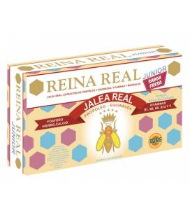 Reina real junior (sabor fresa) 20 ampollas de 10ml de Robis