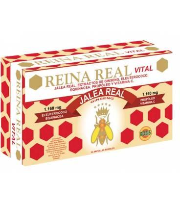 REINA REAL VITAL 30 Ampollas de 10ml de Robis