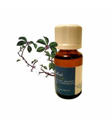 Aceite esencial wintergreen de Inkanatura