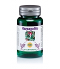 Harpagofito 60 comprimidos de 350mg de Robis