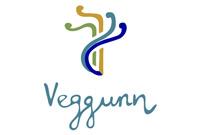 Veggunn logo